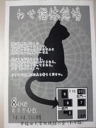 早稲田祭のビラが刷り上がりました!!